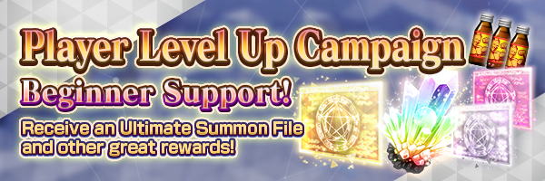 (From 1/31) Player Level Up Campaign